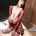 Hitomi loves Miami - image control.gallery.php
