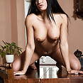 Nicole Vice - Table Top - image control.gallery.php
