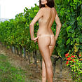 Hailey in Wine Country - image control.gallery.php